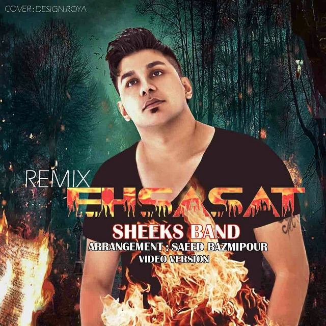 Sheeks Band – Ehsasat (Remix)