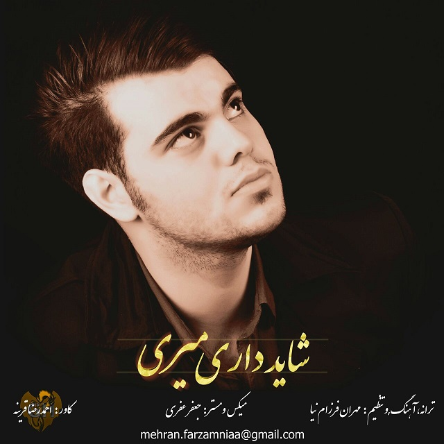 Mehran Farzamnia – Shayad Dari Miri
