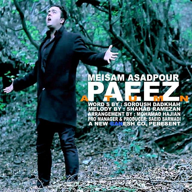 Meisam Asadpour - Paeez
