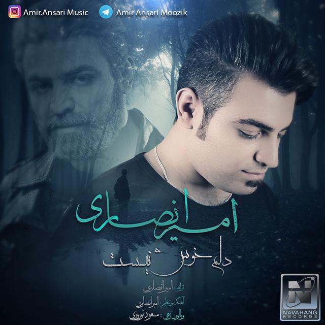 Amir Ansari – Delam Khosh Nist