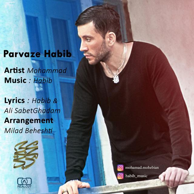 Mohammad Mohebian – Parvaze Habib