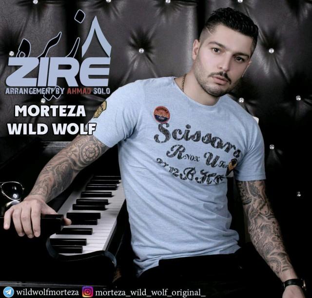 Morteza Wild Wolf – Zire8
