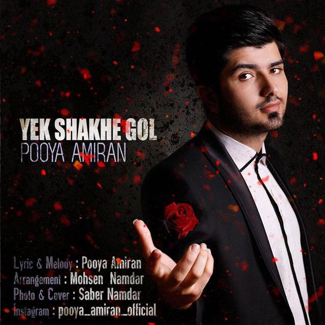 Pooya Amiran – Yek Shakhe Gol