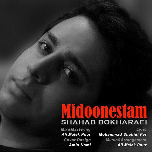 Shahab Bokharaei – Midoonestam
