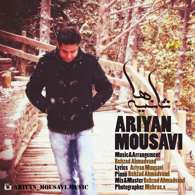 Ariyan Mousavi – Saniyeha