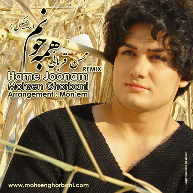 Mohsen Ghorbani – Hame Joonam (Remix).