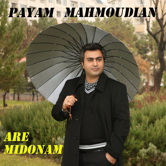 Payam Mahmoudian – Are Midonam