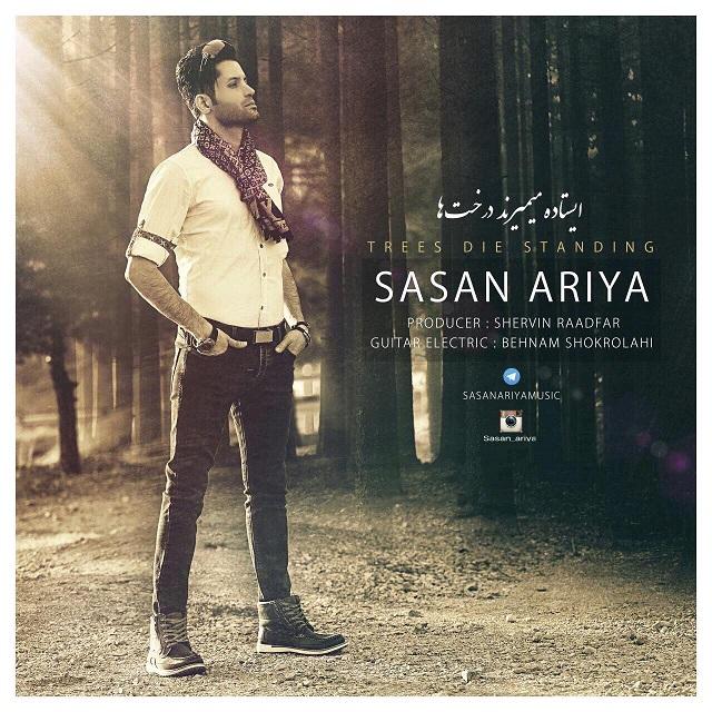 Sasan Ariya – Istade Mimirand Derakhta
