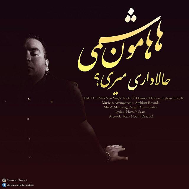 Hamoon Hashemi – Hala Dari Miri