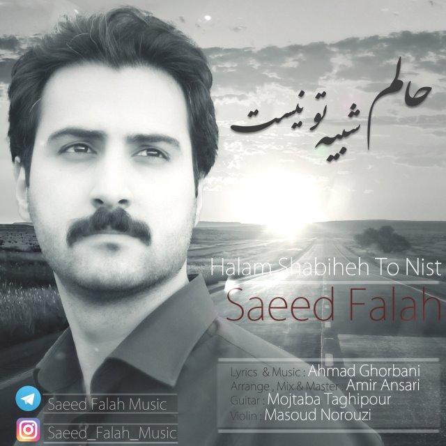 Saeed Falah – Halam Shabihe To Nist