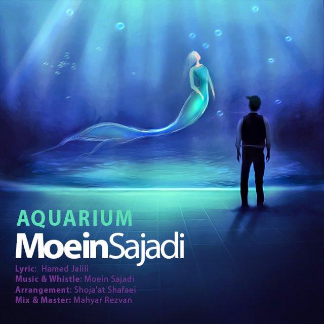 Moein Sajadi – Aquarium