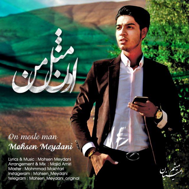 Mohsen Meydani – On Mesle Man