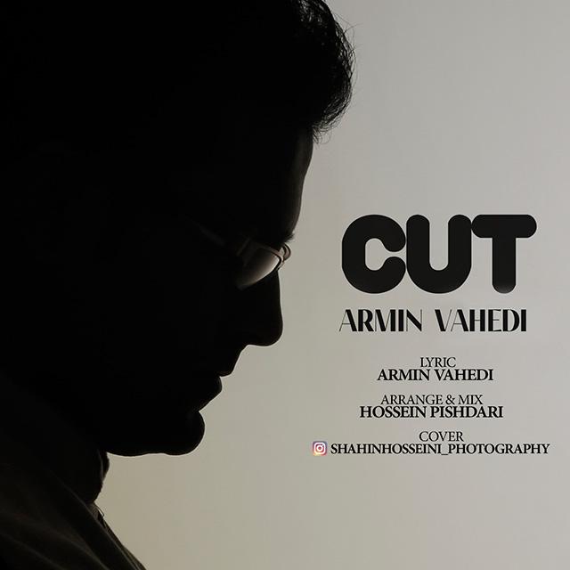 Armin Vahedi – Cut