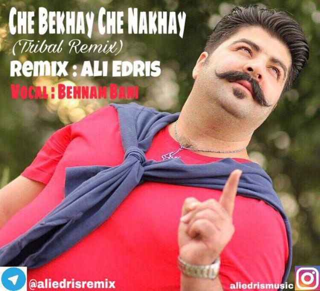 Behnam Bani - Che Bekhay Che Nakhay (Ali Edris Tribal Remix)