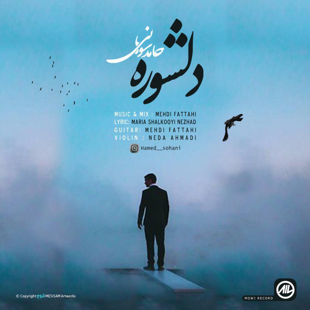 Hamed Sohani – Delshure