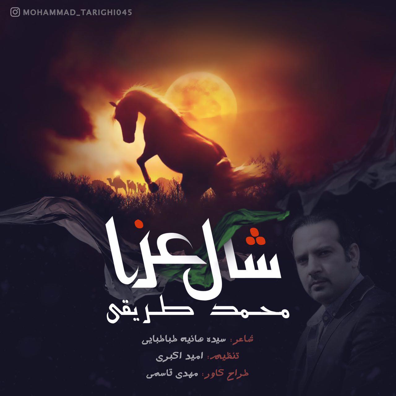Mohammad Tarighi – Shale Aza