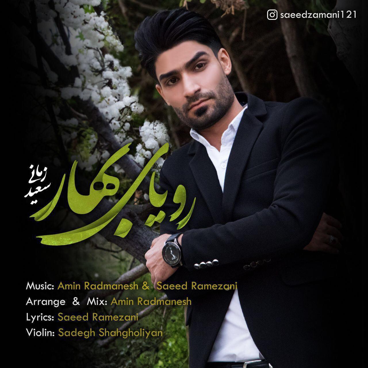 Saeed Zamani – Royaye Bahar