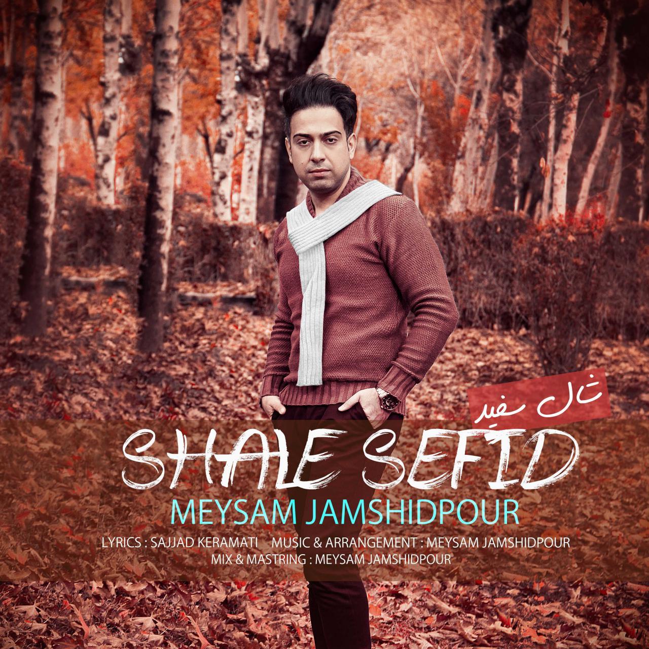 Meysam Jamshidpour – Shale Sefid