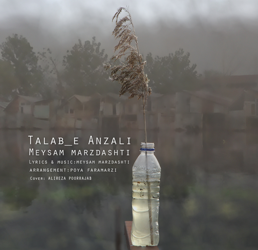Meysam Marzdashti – Talab'e Anzali