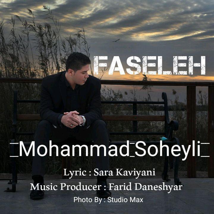 Mohammad Soheyli – Faseleh
