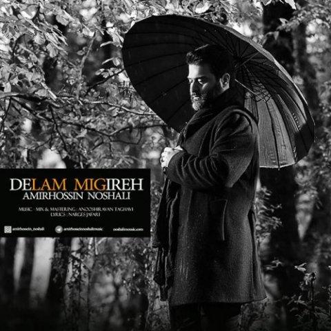 Amir Hossin Noshali – Delam Migire