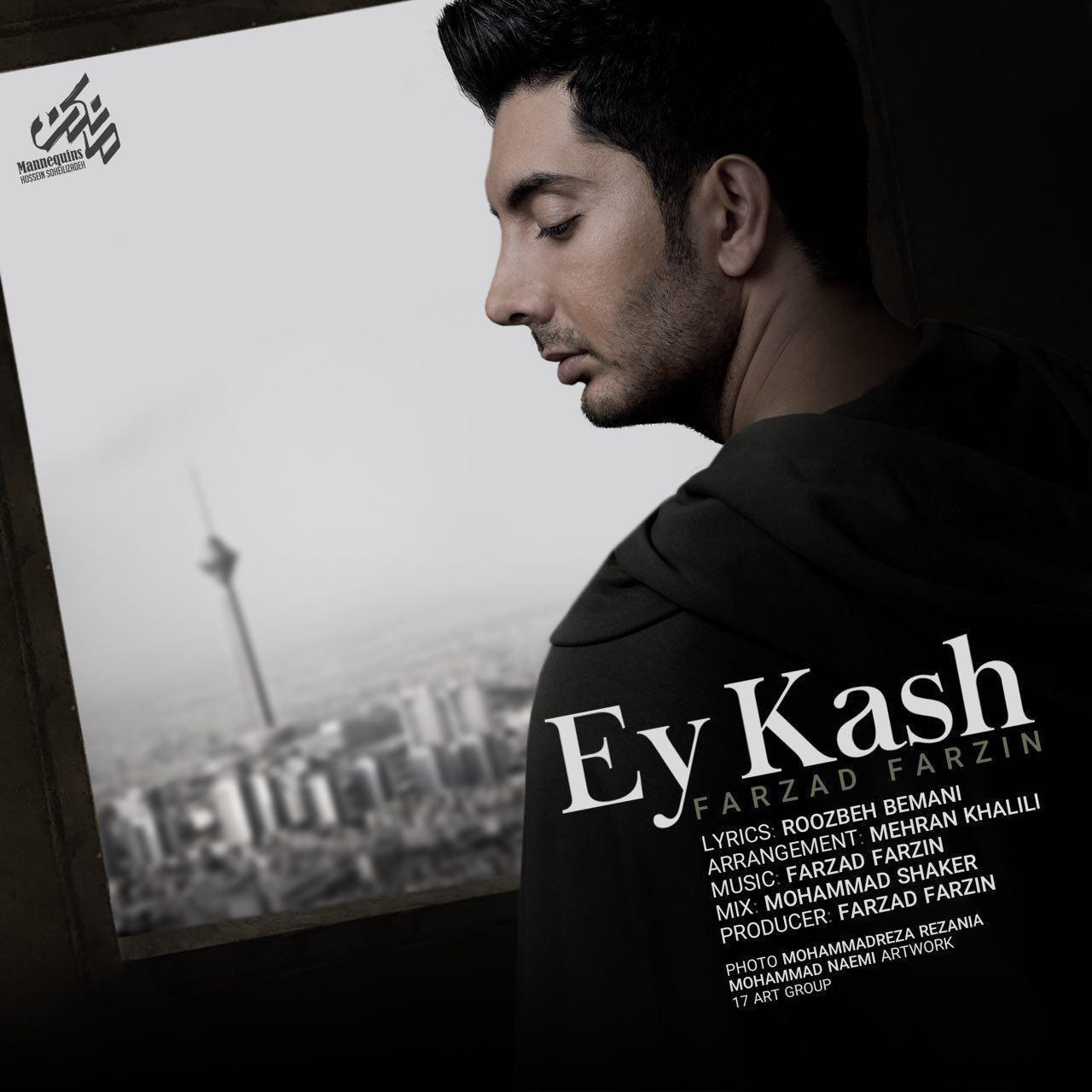 Farzad Farzin - Ey Kash