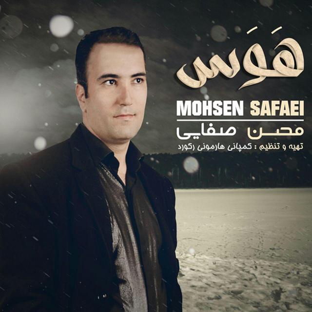 Mohsen Safaei – Havas