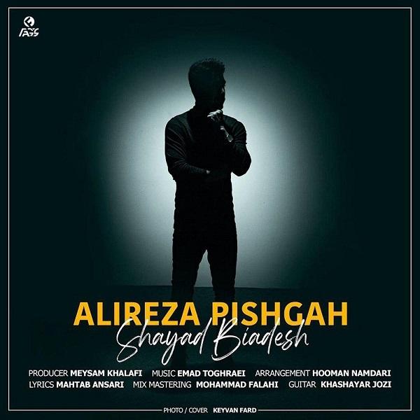 Alireza Pishgah – Shayad Biadesh