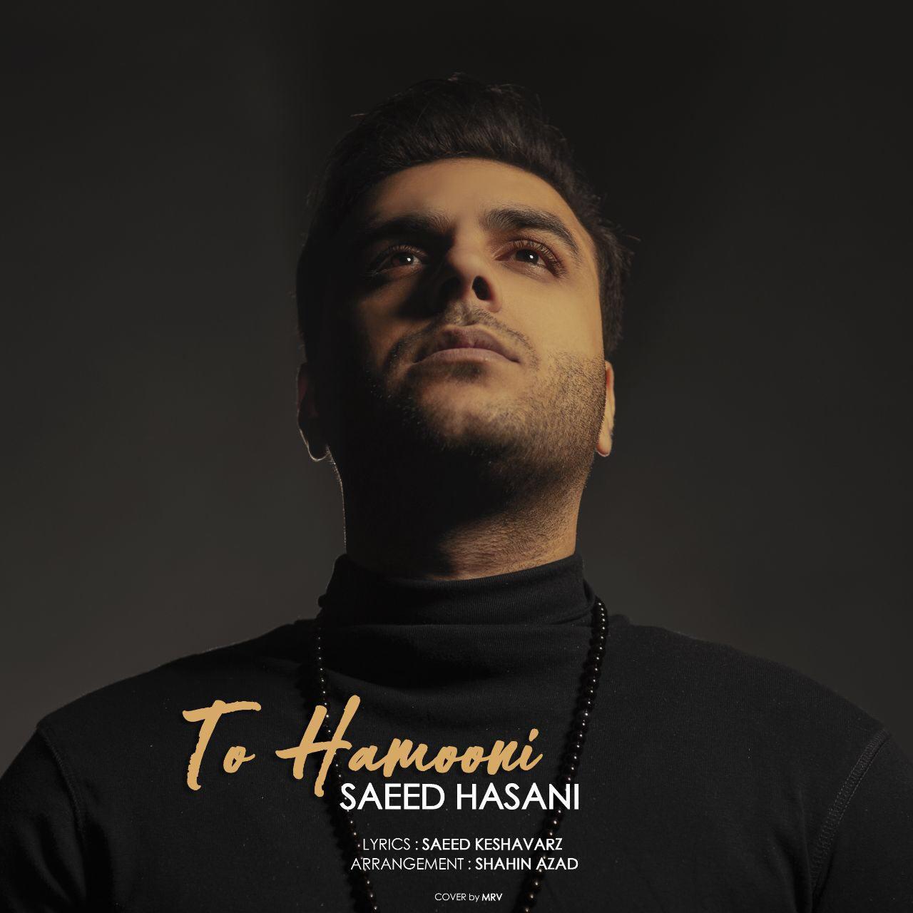 Saeed Hasani – To Hamooni