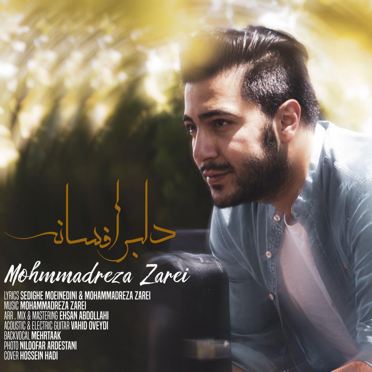 Mohammadreza Zarei – Delbare Afsaneh