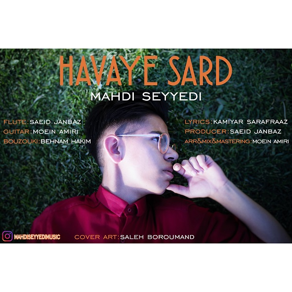 Mahdi Seyyedi – Havaye Sard