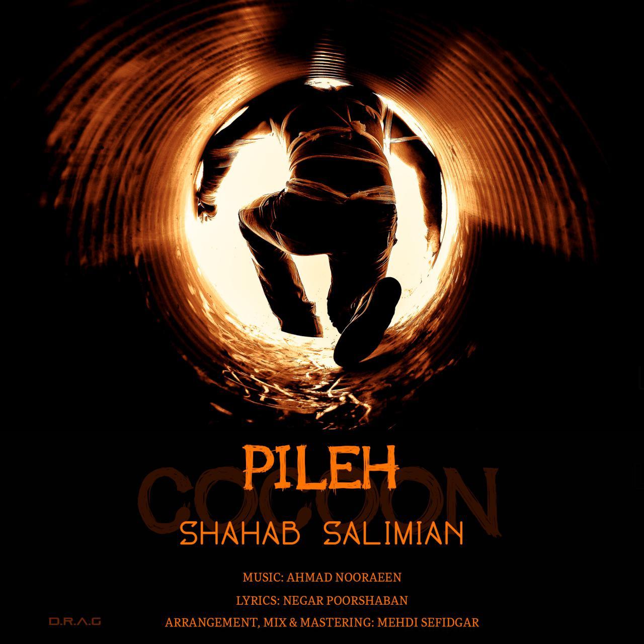 Shahab Salimian – Pileh
