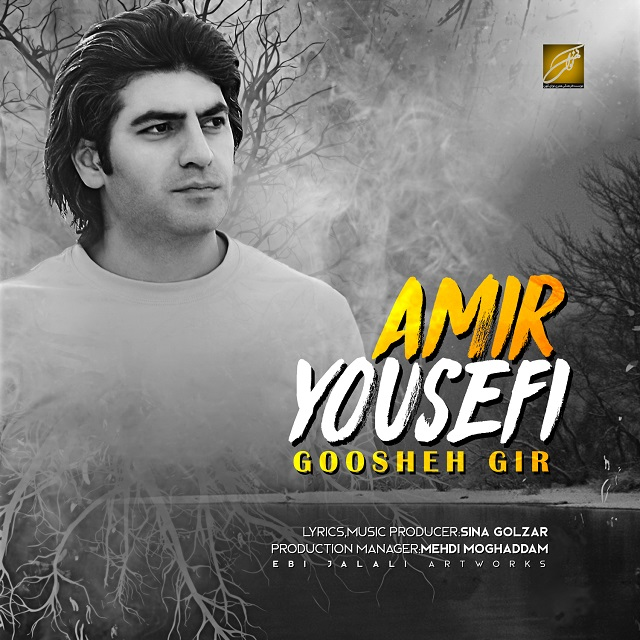 Amir Yousefi – Goosheh Gir