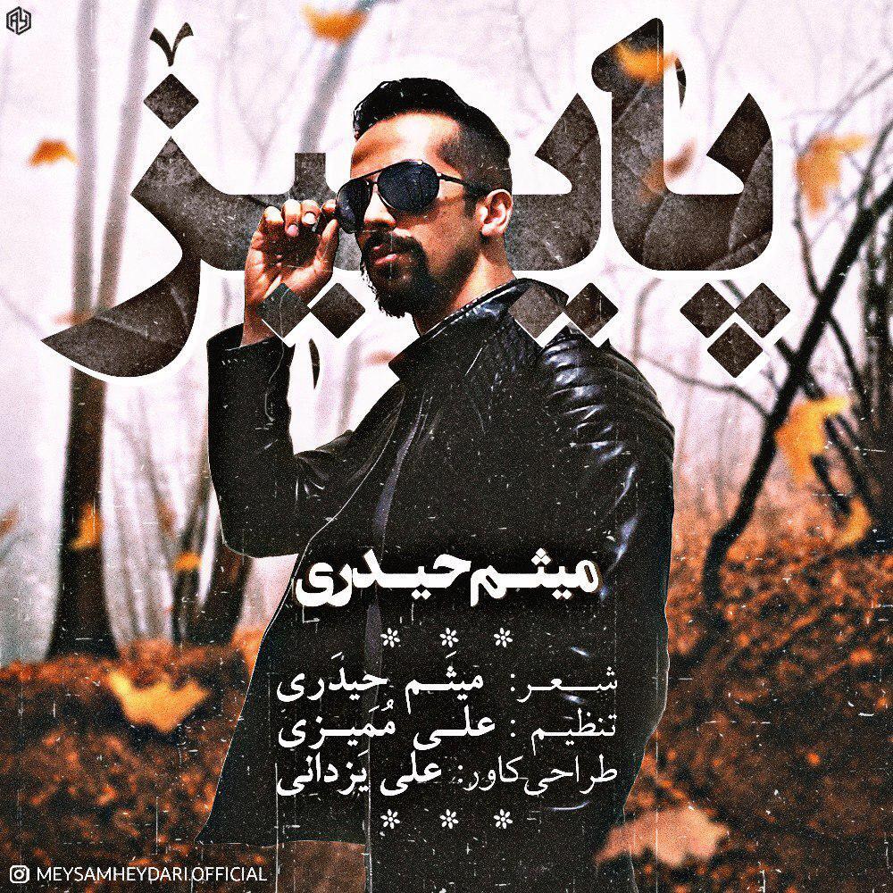 Meysam Heydari – Paeez