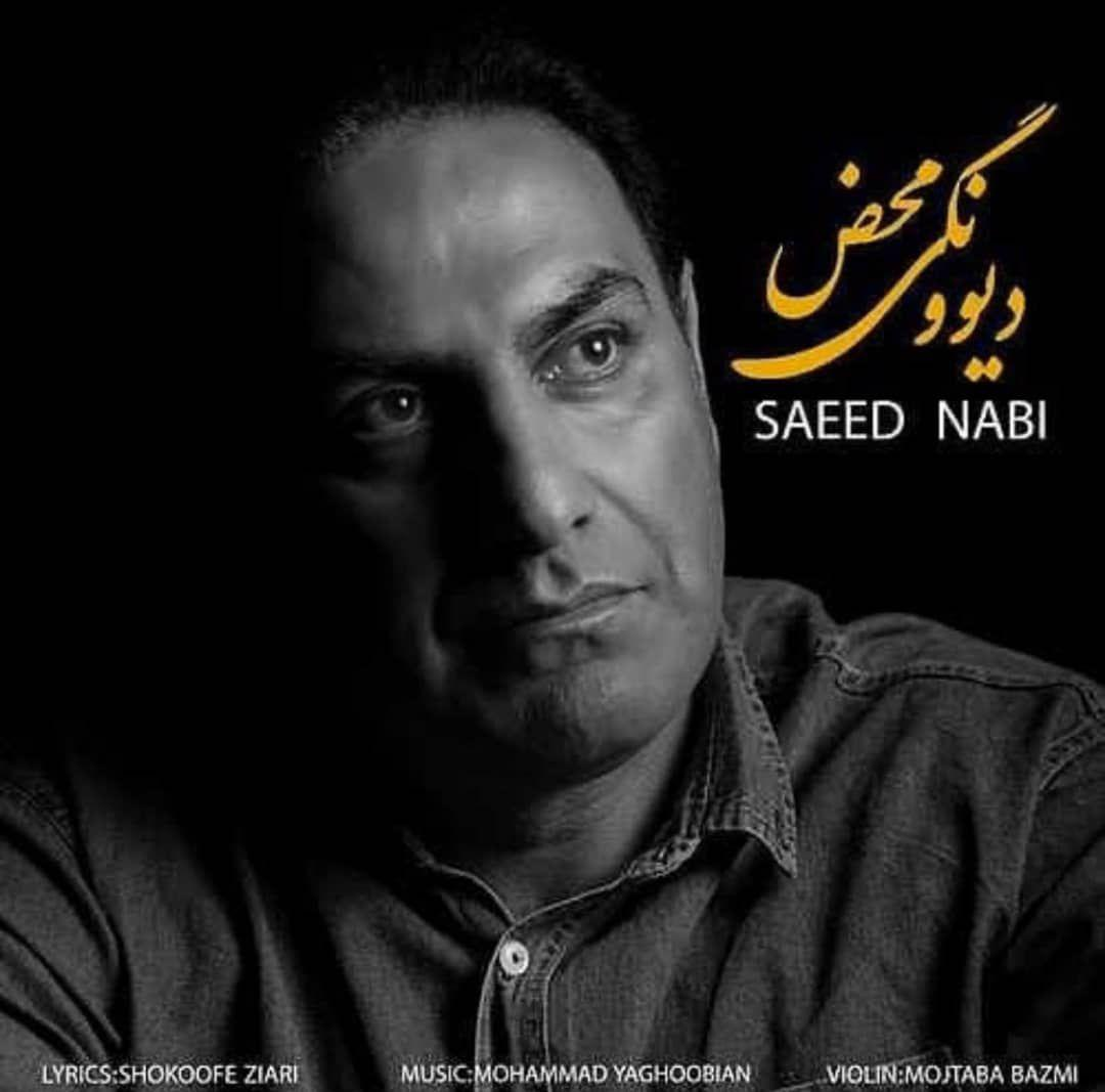 Saeed Nabi – Divoonegi Mahz