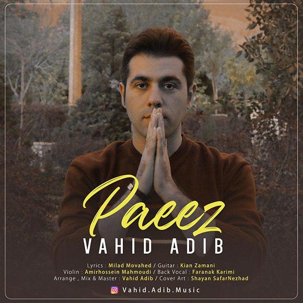 Vahid Adib – Paeez