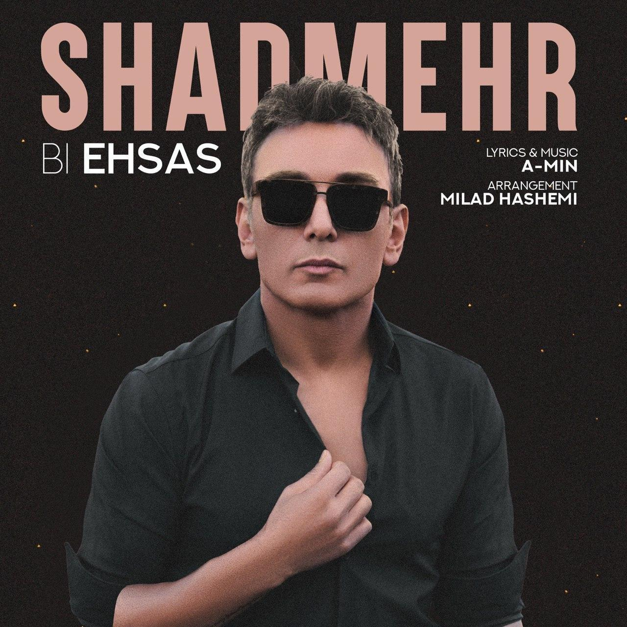 Shadmehr Aghili – Bi Ehsas