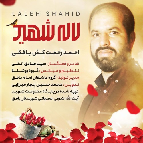 Ahmad Zahmatkesh Bafghi – Laleh Shahid