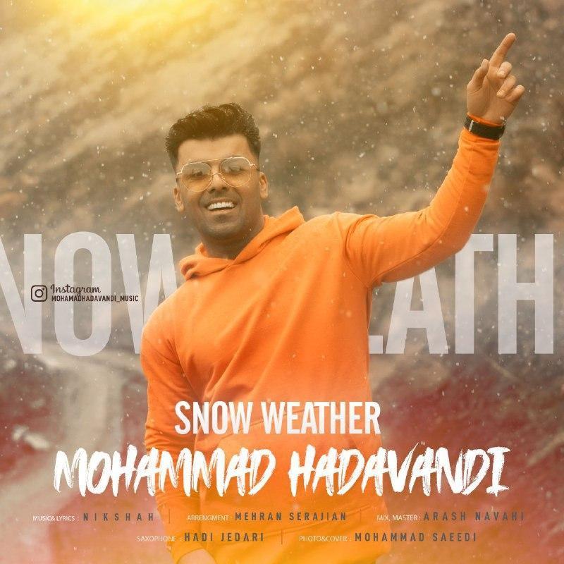 Mohammad Hadavandi – Snow Weather