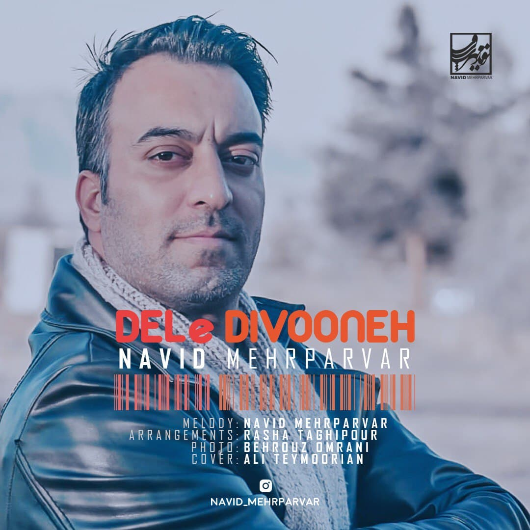 Navid Mehrparvar – Dele Divooneh