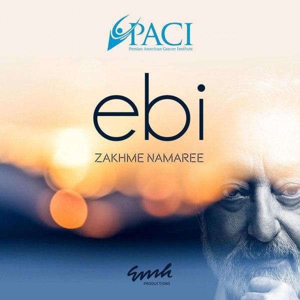 Ebi – Zakhme Namaree