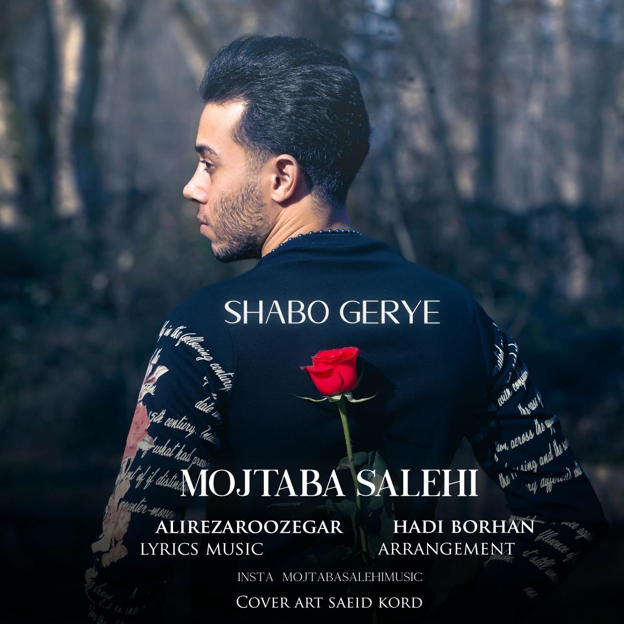 Mojtaba Salehi – Shabo Gerye