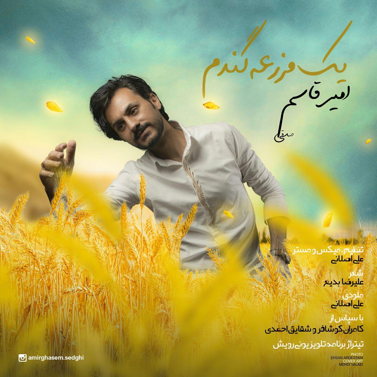 Amir Ghasem Sedghi – Yek Mazraeh Gandom