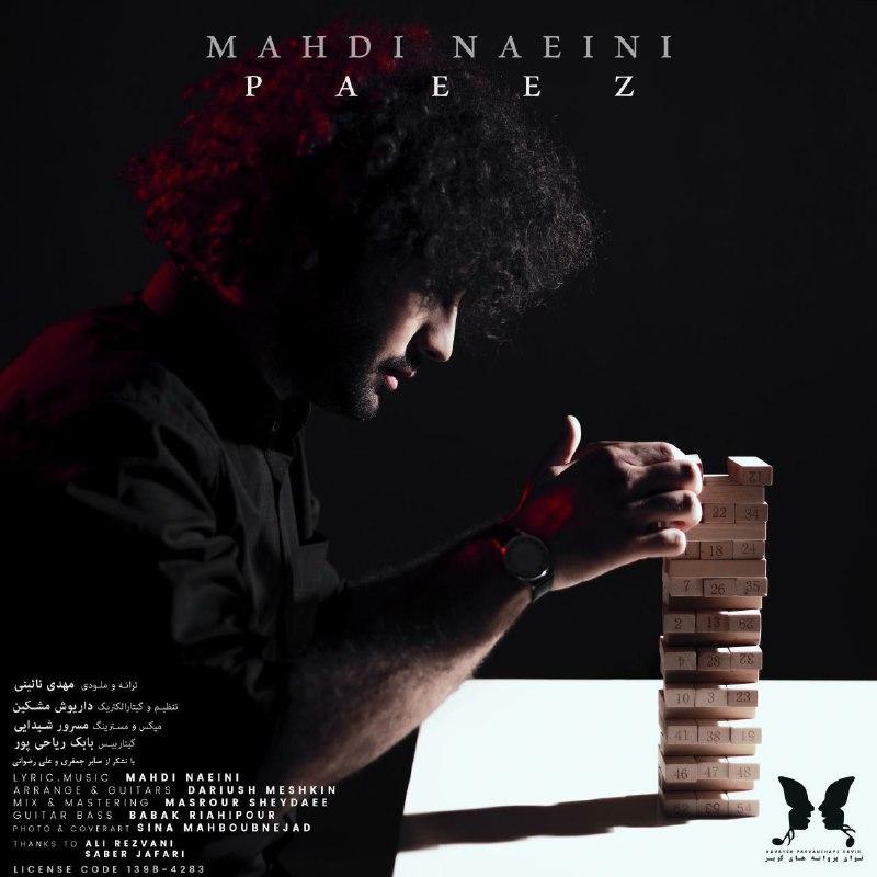 Mahdi Naeini – Paeez