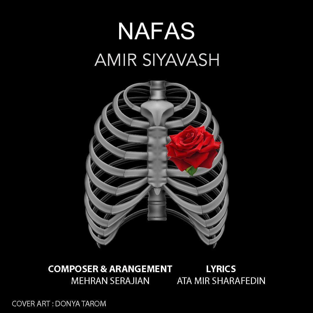 Amir Siyavash – Nafas
