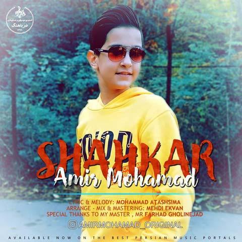 AmirMohamad Nodehi – Shahkar