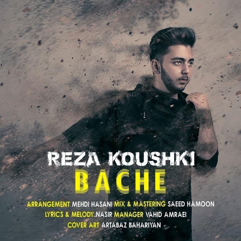 Reza Koushki – Bache