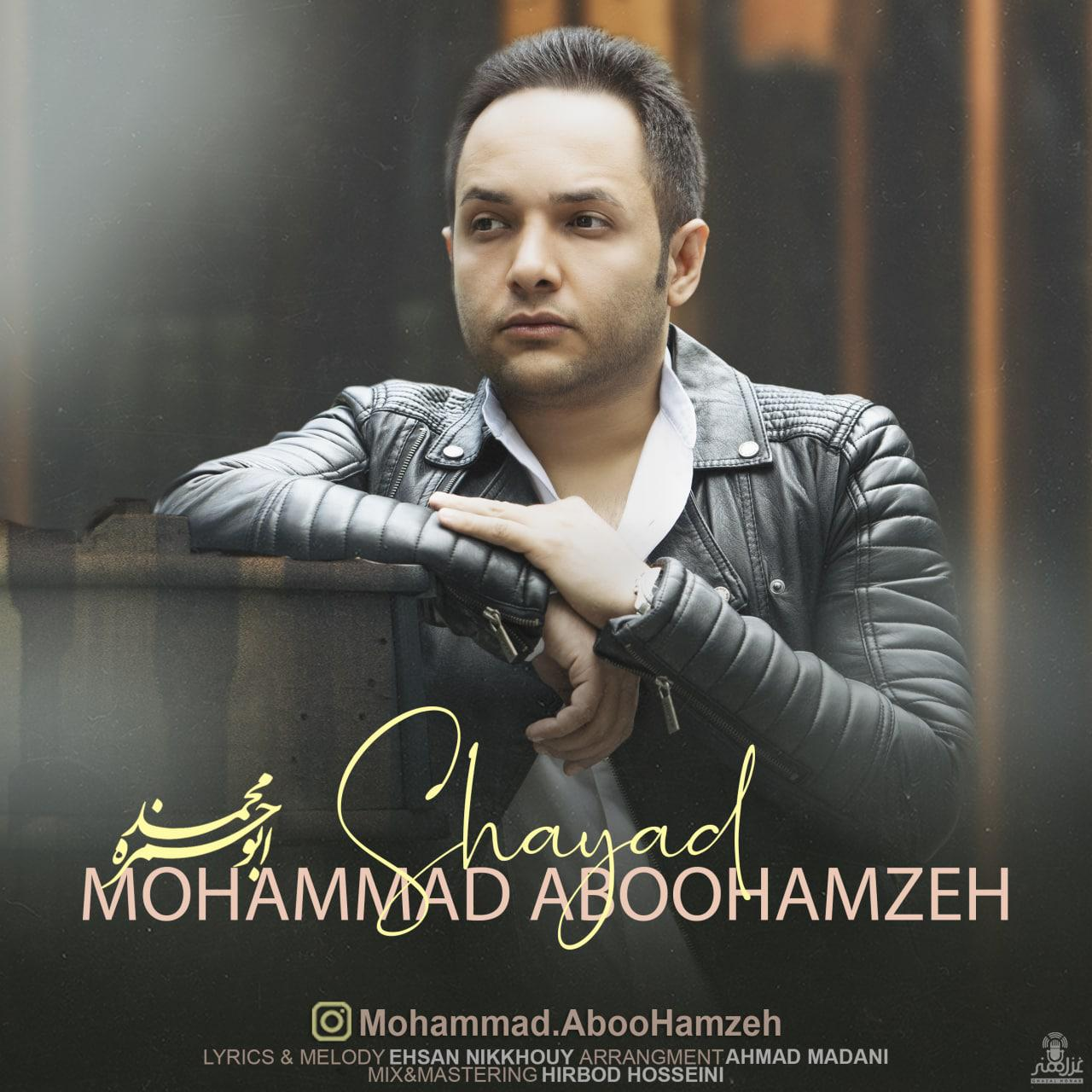 Mohammad Aboohamzeh – Shayad