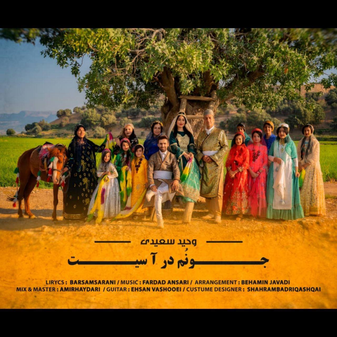 Vahid Saeedi – Junom Dara Sit
