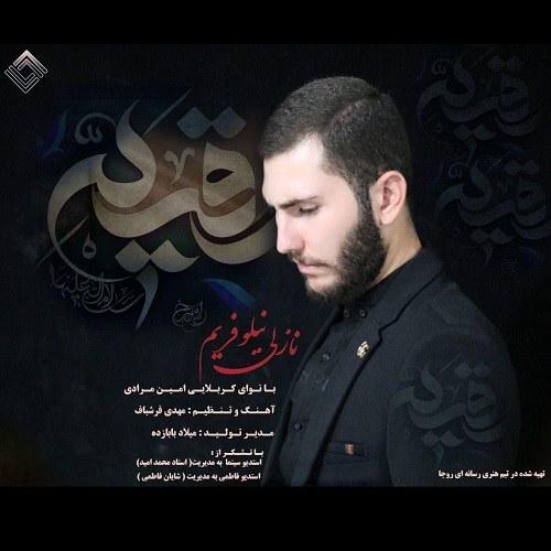 Amin Moradi – Nazli Niluofarim